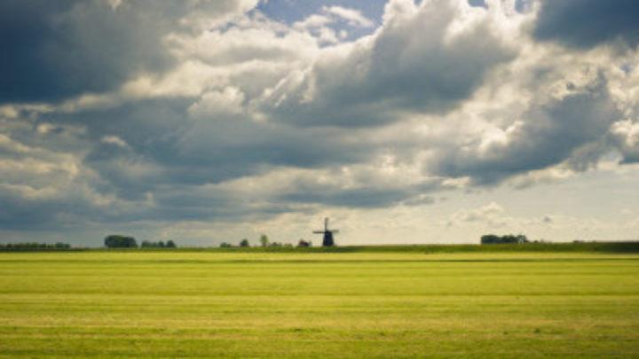 Afbeelding bij Nieuw Landschap