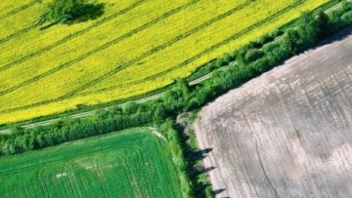 Afbeelding bij Taxatie agrarische gronden – Eigen Haard